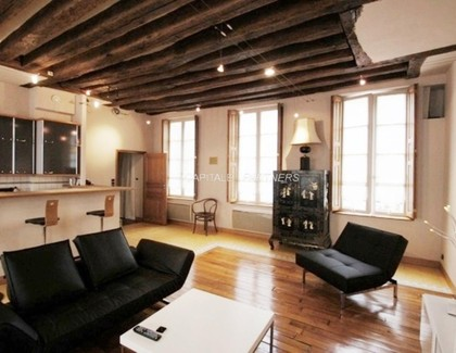 furnished  1 bedroom Apartment PARIS 3